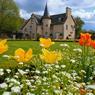 Située dans l'agglomération rennaise, Cesson-Sévigné (Ille-et-Vilaine) a obtenu sa 4e fleur pour avoir planté 10 000 arbres en 3 ans, réaménagé 58 km de sentiers pédestres et réalisé un fleurissement harmonieux de son espace public.