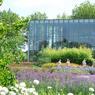 La municipalité de Lambersart (Nord), aux portes de Lille, a reçu la 4e fleur pour sa politique de rénovation urbaine qui laisse une large place à la biodiversité. Pas mois de 320 variétés de plantes sont cultivées dans ses jardins publics.
