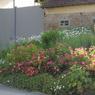 Petite commune picarde de 538 habitants, située à deux pas de la baie de Somme, Mons-Boubert (Somme) a su mettre en valeur ses espaces verts . Une quatrième fleur méritée.