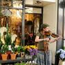 Les musiciens en tout genre emplissent les ruelles de Galway d'une atmosphère joyeuse et festive...