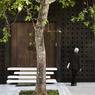 Les rues d'Athènes s'embellissent touche par touche : ça bouge autour de l'Acropole !