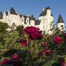 La roseraie du Château du Rivau, en Val de Loire.