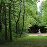 L'une des allées du parc, avec une statue de Diane chasseresse, vue depuis la fenêtre du bureau de Roger Martin du Gard.