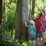 Bien connues des pêcheurs, présents dans les hortillonnages, les Waders permettent de marcher dans l'eau ou, comme ces enfants, de regarder vers le ciel quand la plasticienne Stéphanie Cailleau, les fait... grimper aux arbres.
