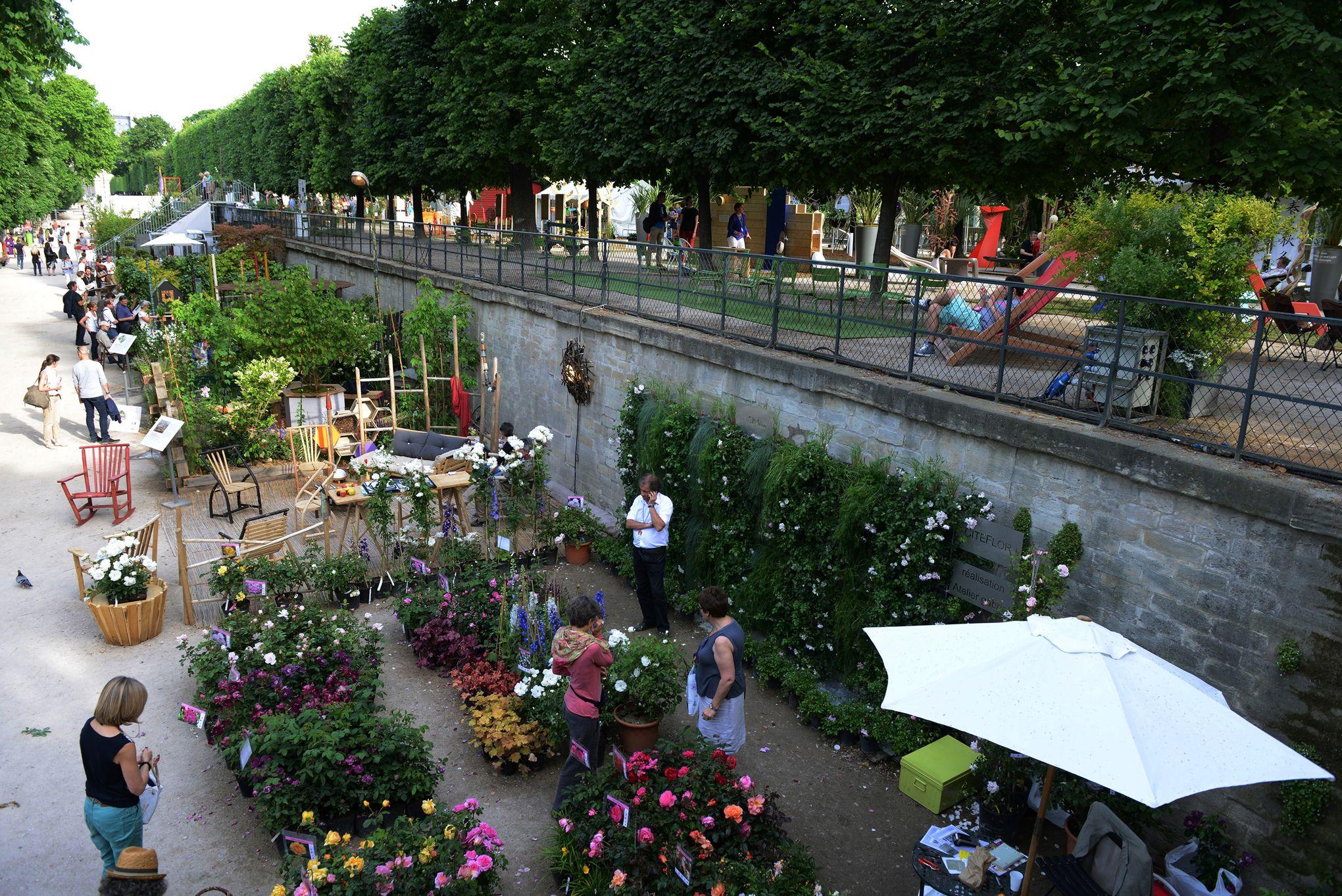 Jardins jardin aux tuileries sur les pav s le bonheur for Jardin bonheur 2015