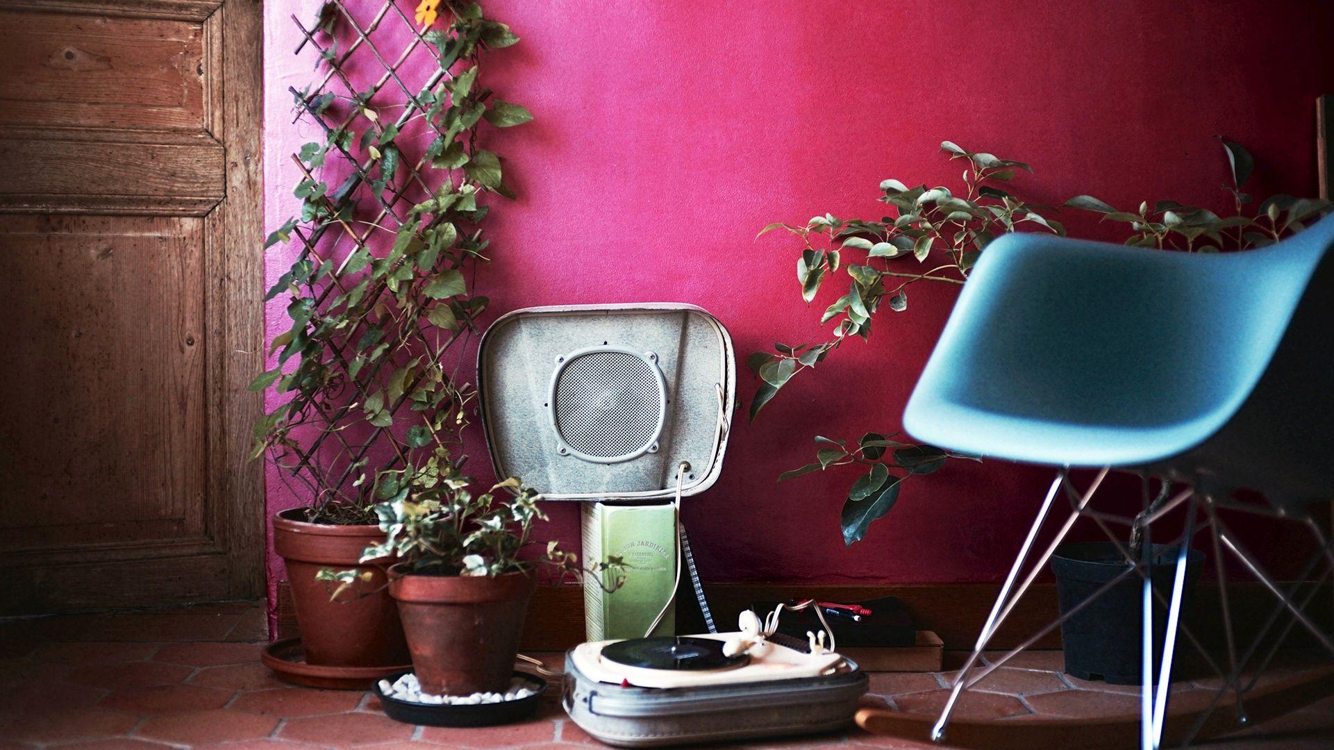 un nouveau service de livraison et soins de plantes domicile. Black Bedroom Furniture Sets. Home Design Ideas