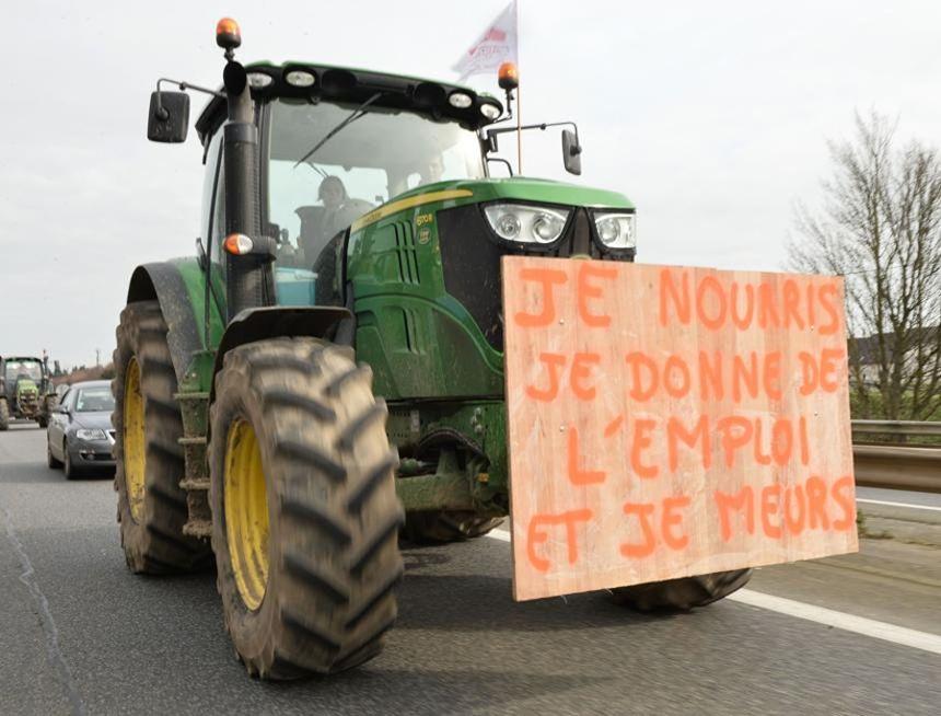 En Pleine Crise Des Leveurs Une Chambre D 39 Agriculture S