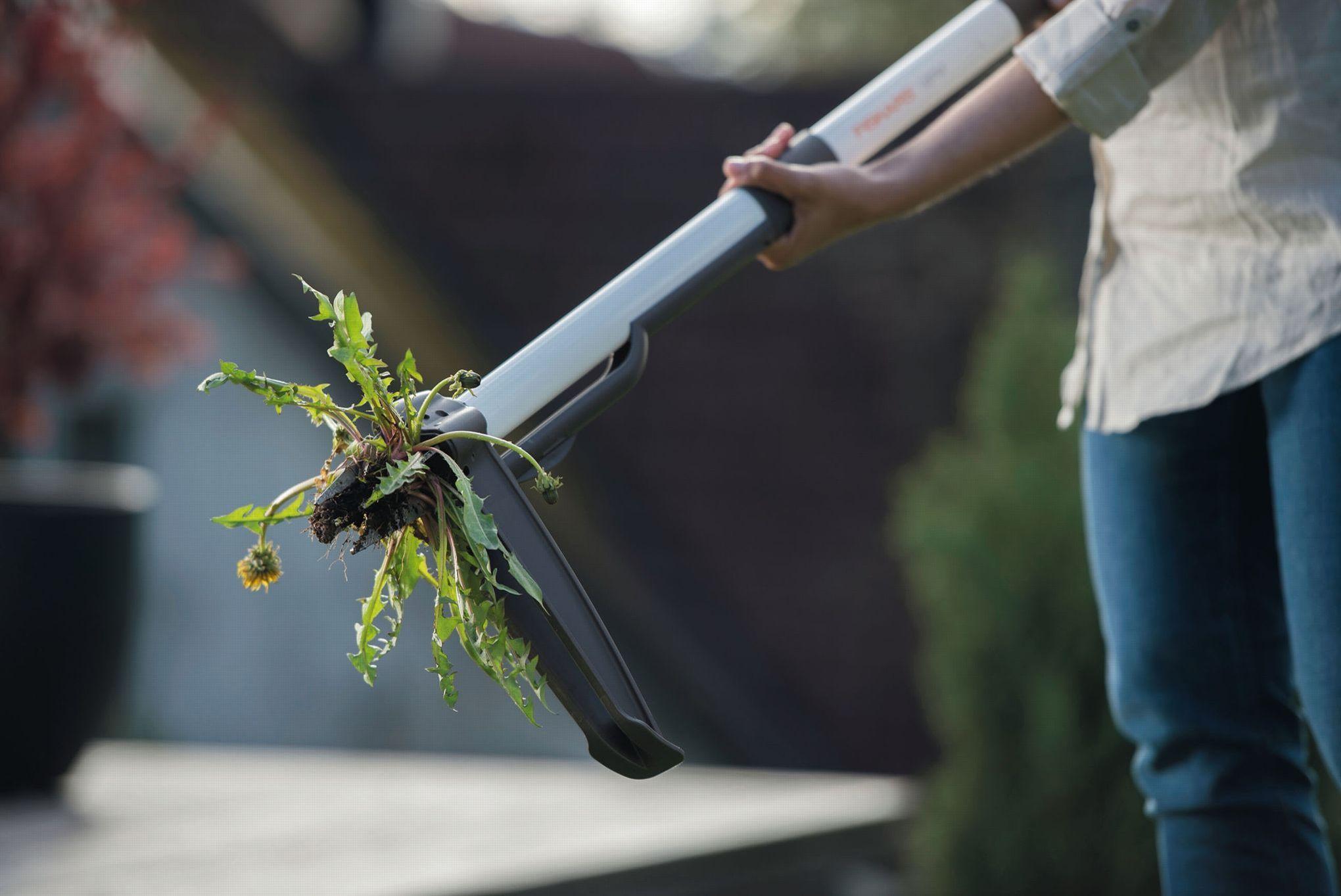 Mauvaises herbes l 39 arme fatale - Fabriquer son desherbant ...