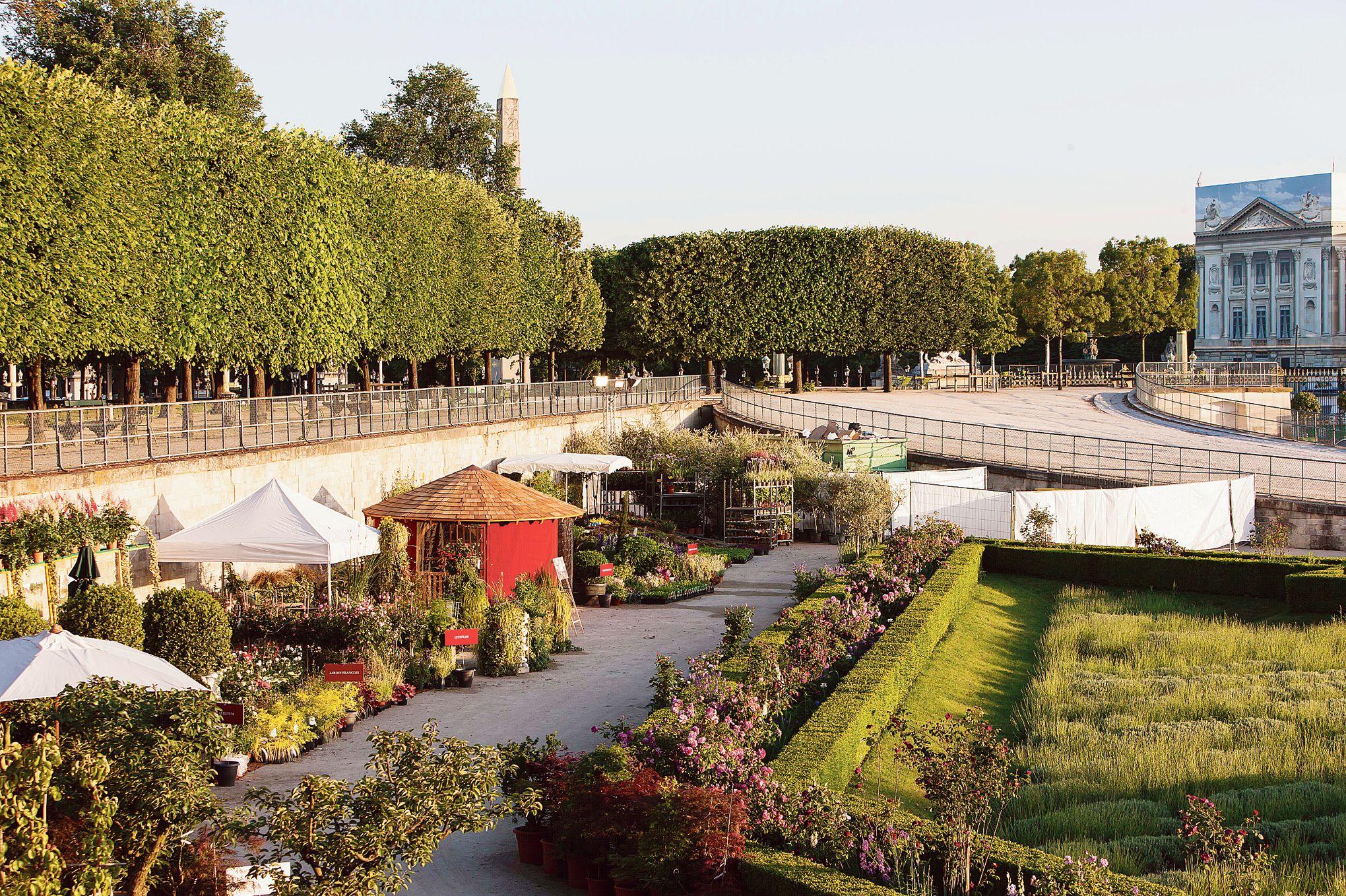 Jardins jardin aux tuileries la cit passe au vert for Jardin tuileries
