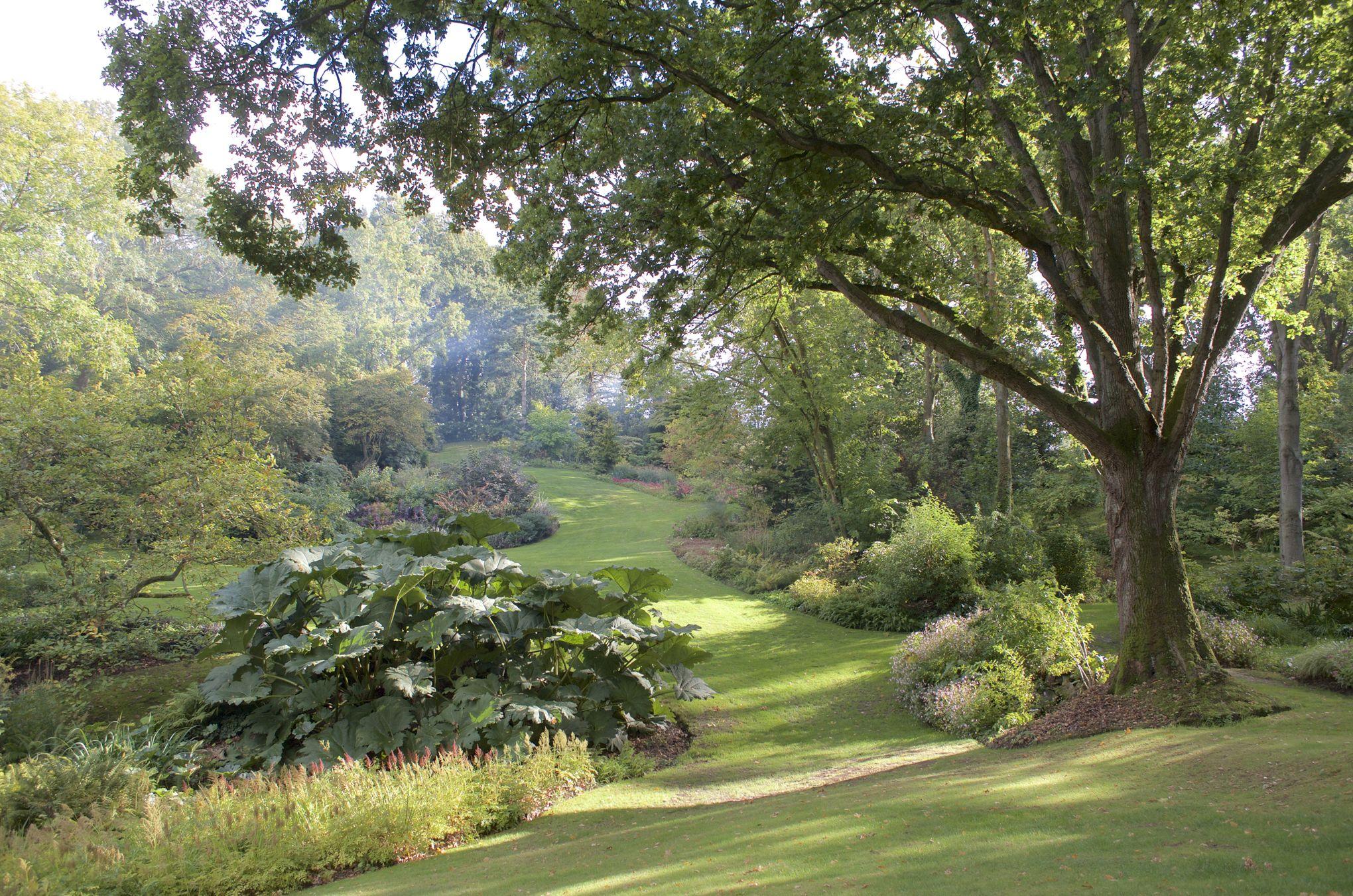 Jardin du vasterival r gate sur une mer de velours vert for Jardin du pic vert