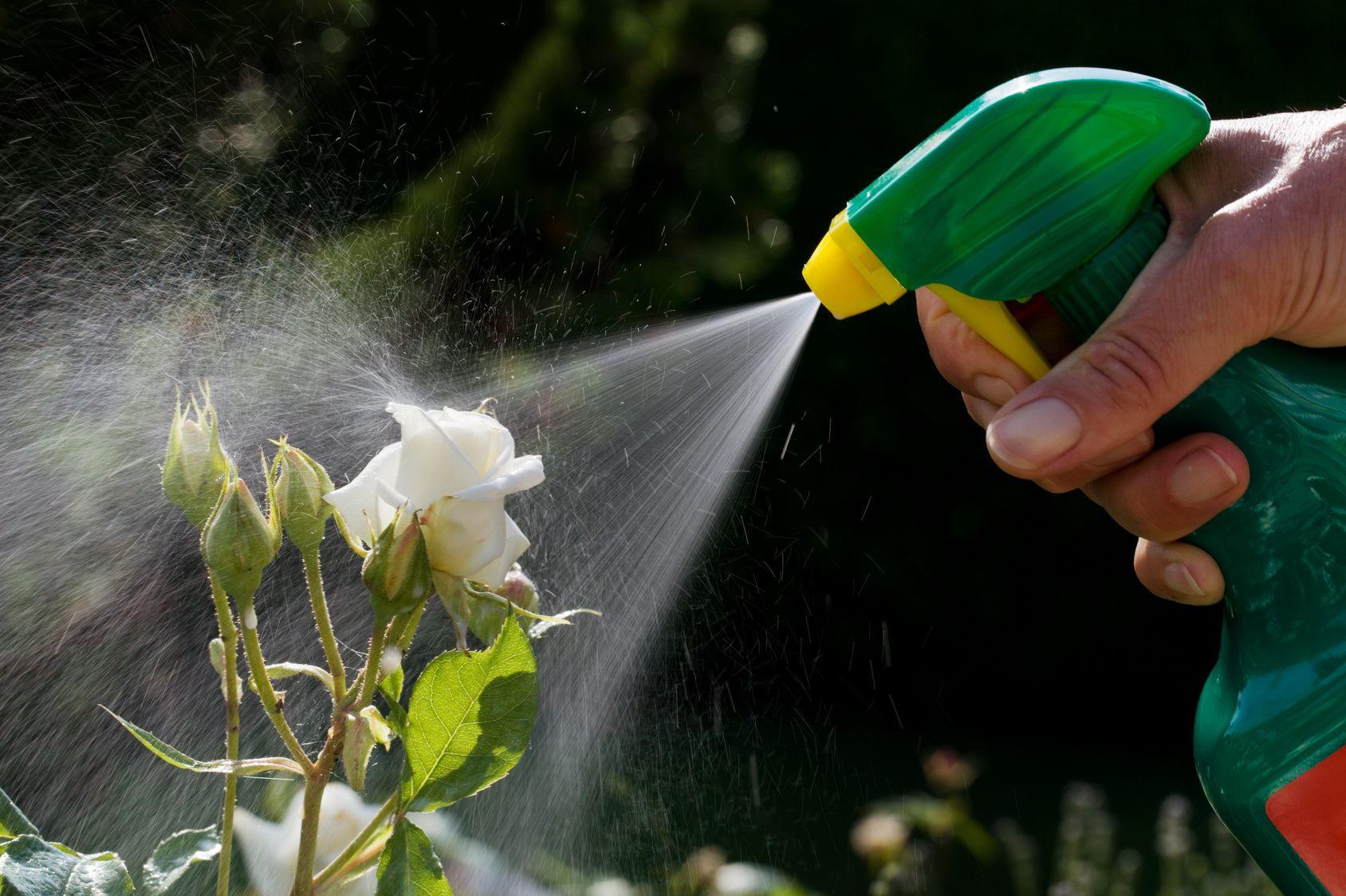 enfin une loi anti-pesticide chimique pour 2019 ettendu pour les particuliers