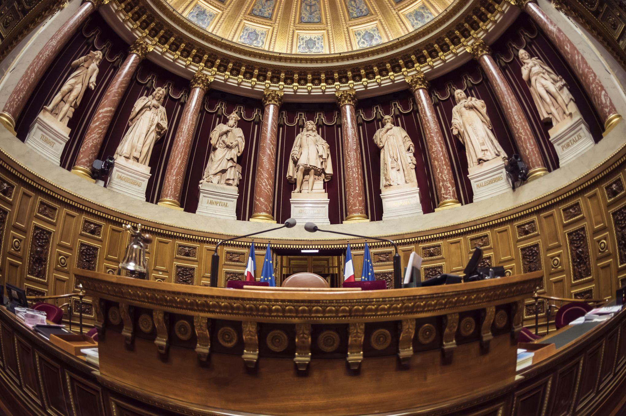 Quoi sert le d ontologue de l 39 assembl e nationale - A quoi sert l ortie ...