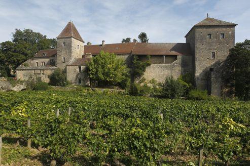 vignoble et chateau a vendre