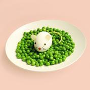 Les astuces culinaires pour duper les enfants (et leur faire manger des légumes)