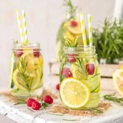 Dix recettes simples et rapides d'eaux vitaminées