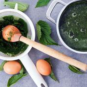 Anti-fatigue et détoxifiante, la soupe d'orties, une alliée contre le froid