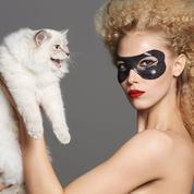 La stratégie cat woman