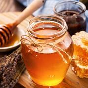 Choix, dégustation, conservation... Petit précis du miel