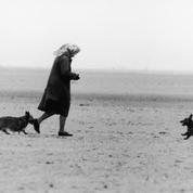 La reine Elizabeth II pleure la disparition de Whisper, son dernier corgi