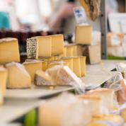 Les fromages AOP sont-ils vraiment en danger ?