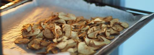 Bananes, abricots, figues… Comment faire ses fruits secs maison ?