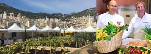 Expérience glamour : Villa La vigie et potagers flottants pour la route du gout