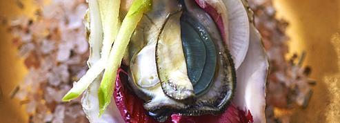 Huîtres au jus de pomme, wasabi et coriandre