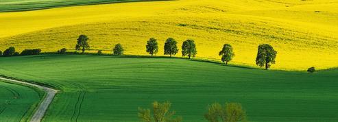 Immobilier rural, les investisseurs se mettent au vert