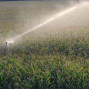 La branche agricole se reprend chez Exel Industries