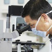 L'espoir renaît sur Transgène, mais la «biotech» reste très spéculative