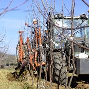 Agriculteurs: Bruxelles permet aux États de relever les aides jusqu'à 25.000 euros