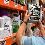 Procès Roundup: Monsanto condamné à payer 81 millions de dollars à un plaignant