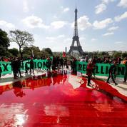 EN IMAGES - Déclin de la biodiversité: du faux sang coule au Trocadéro