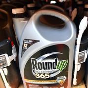Glyphosate: Monsanto condamné à payer 2 milliards de dollars par un jury californien