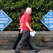 Européennes : l'Irlande et la République tchèque votent