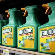 Fichiers Monsanto : 600 personnes concernées en France et en Allemagne, selon Bayer