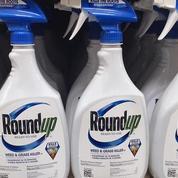 Glyphosate : un juge divise par trois les indemnités dues par Bayer