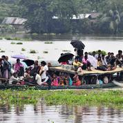 Les inondations s'aggravent en Inde, menaçant hommes et rhinocéros