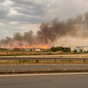 Canicule : des milliers d'hectares de cultures incendiés