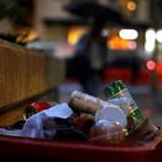 Australie : un lycée bannit les poubelles pour réduire les déchets de ses élèves