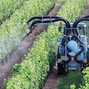 Pesticides : le gouvernement propose une distance minimale