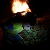 Brésil: 63 arrestations lors de l'opération contre les incendies