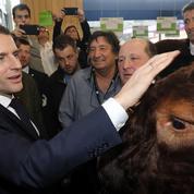 Macron va se rendre au Sommet de l'élevage