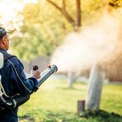 75% des Français utilisent des pesticides à la maison