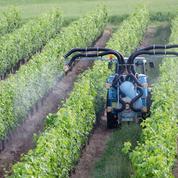 Zones sans pesticides : Philippe présentera le dispositif retenu avant Noël