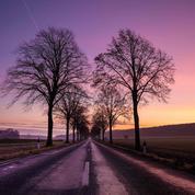 La pause photo du jour : les belles couleurs de l'hiver