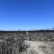 Feux en Australie : les pompiers redoublent d'efforts avant la prochaine vague de chaleur