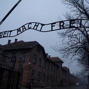 75e anniversaire de la libération d'Auschwitz : la communauté internationale se mobilise
