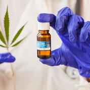 L'expérimentation du cannabis thérapeutique prévue pour septembre