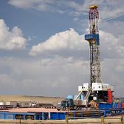 Coronavirus : l'Opep prévoit une forte baisse de la croissance de la demande mondiale de pétrole